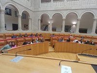 C.E.I.P. El Arco visita el Parlamento